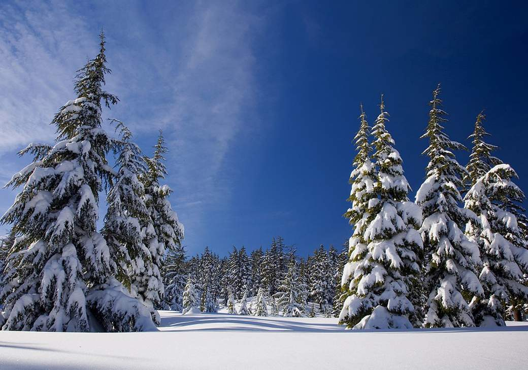 snow-1902052_960_720